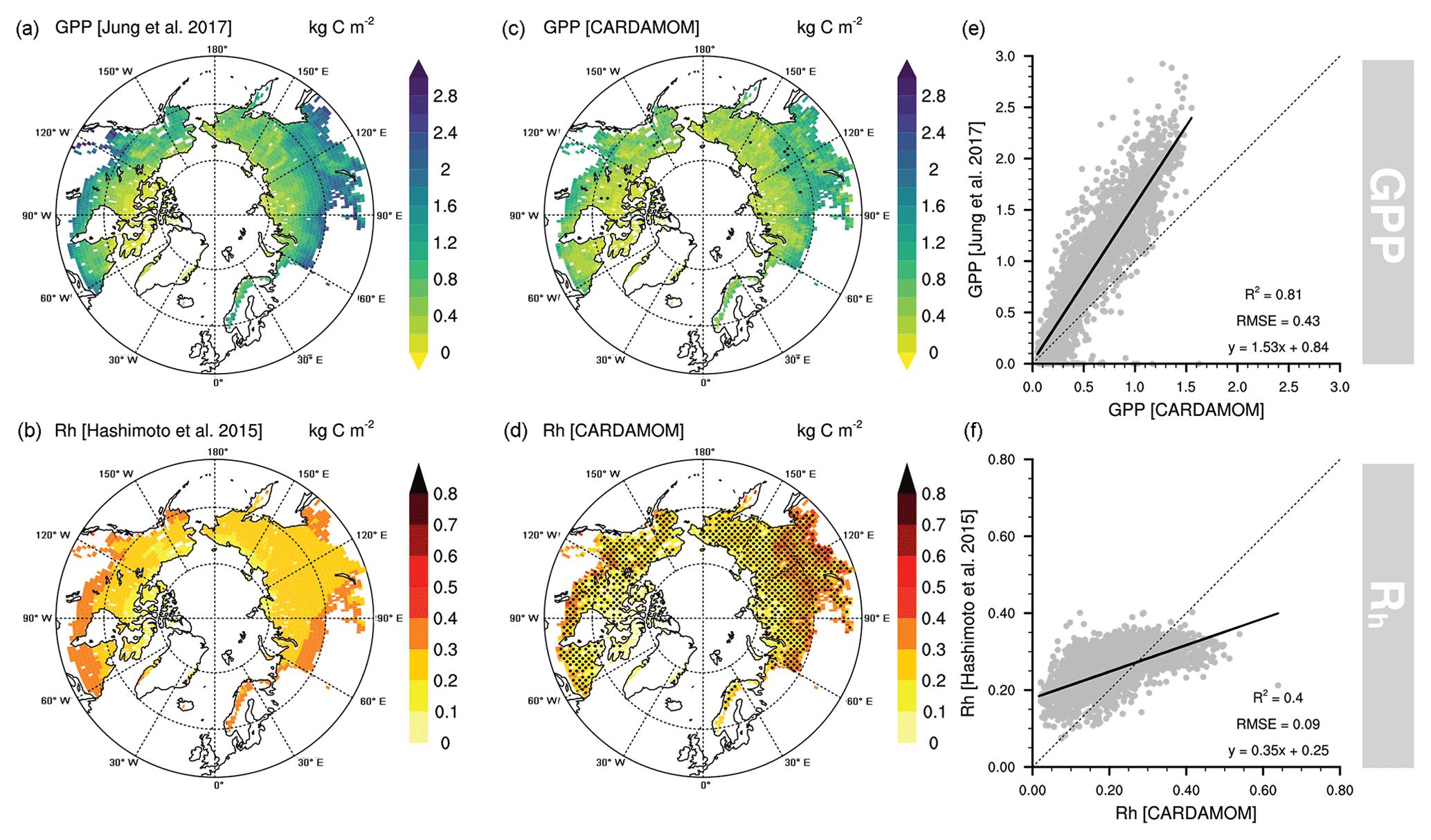 ESD - Evaluation of terrestrial pan-Arctic carbon cycling