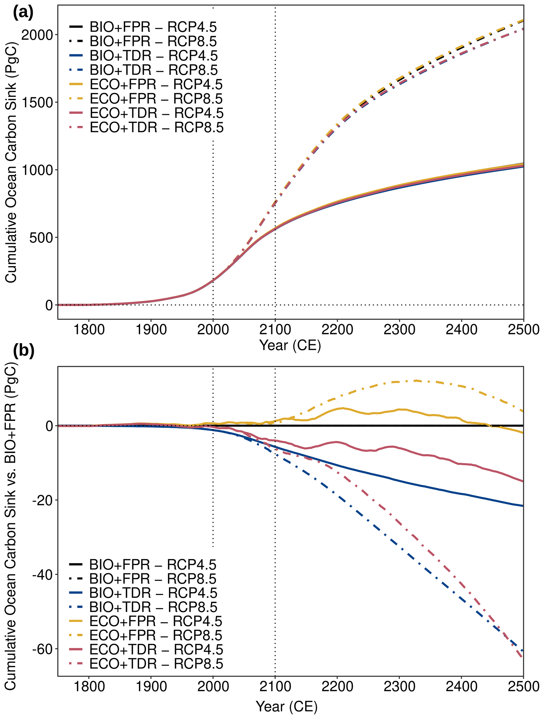 Graphs showing ecoGEnIE simulation results for the absolute cumulative ocean carbon sink and the cumulative ocean carbon sink relative to BIO+FPR under different configurations and forcing scenarios. Results for RCP4.5 and RCP8.5 are shown for each of the default calibration configurations (BIO+FPR, BIO+TDR, ECO+FPR, ECO+TDR). Adding TDR reduces the cumulative ocean carbon sink (-20 GtC by 2500 under RCP4.5, -40GtC under RCP8.5), adding ECO temporarily increases the sink (~0 GtC RCP4.5, +5GtC RCP8.5), and ECO+TDR results in an overall decrease in the sink (-15 GtC RCP4.5, -40 GtC RCP8.5).