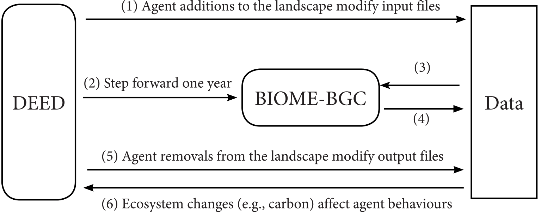 ESD - Modelling feedbacks between human and natural